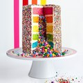 Williams Sonoma Just Made It Way Easier to Bake Those Sprinkle Explosion Cakes at Home