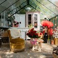 This Barcelona-Based Florist Has Her Own Greenhouse on Her Property