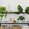 Faux Plants Just Got a Lot More Stylish Thanks to This Cult Online Fave