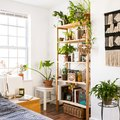 Bohemian Bedroom Ideas on a Budget? Sign Us Up Stat