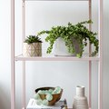 This IKEA Shelf Got a Serious (Easy) Makeover Using Chalk Spray Paint