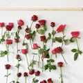 Every Party Should Have This DIY Floral Wall Hanging