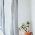 IKEA Has Designed Curtains That Reduce Air Pollution in Your Home