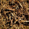 How Much Mulch Do I Need?