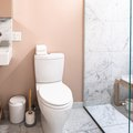 What Is an Accessible Toilet?