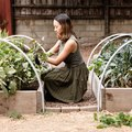Start a Vegetable Garden With These Easy Steps