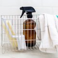 Household Disinfectant Tutorial for Everyone