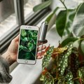 This High-Tech Plant Gadget Basically Lets Your Plant Text You