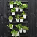 Create a Modern Vertical Garden Using IKEA Bed Slats