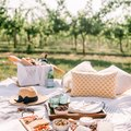 How to Create a Picture-Perfect Picnic for Spring