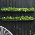 Rain Gutter Gardens Are What You Want, and We've Got the DIY to Prove It