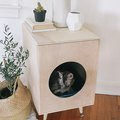 DIY Modern Plywood Kitty Litter Box