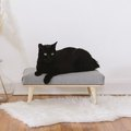 Even Finicky Felines Will Love This DIY Mini Modern Daybed