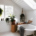 Yes, You Should Turn Your Bathroom Into a Lush, Plant-Filled Retreat — Here's How