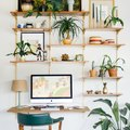Hold the Phone: These 8 Small Home Office Ideas Mean Business