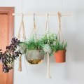 Hang Potted Herbs From This DIY Wood Hanger