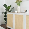 I Want Cane-DIY: 6 Easy Projects Featuring Everyone's Favorite Material