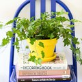 Spotted: 82 Ways People Are Using Plants as Decor