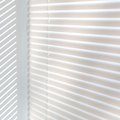 How to Paint Vinyl Blinds
