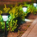 How to Fix Outdoor Solar Lights That Stop Working