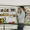 Troubleshooting Refrigerator Smells