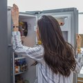 What Is the Function of the Thermistor in a Refrigerator?