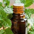 How to Dilute Peppermint Oil