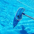 How to Clean a Neglected Above-Ground Pool