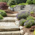Tips for Low-Maintenance Landscaping