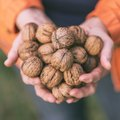 How to Prepare Raw Walnuts