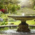 How to Remove and Prevent Algae in a Fountain