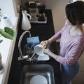 How to Clean Moldy Dishes