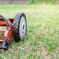 What Type of Oil Does a Yard Machine Lawn Mower Use?
