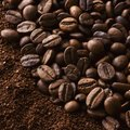 Plants & Shrubs That Like Coffee Grounds