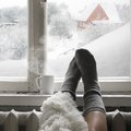 Tips for Saving Energy in Your Home