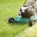 Push Mower vs. Self-Propelled
