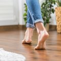 How to Stop Hardwood Floors Squeaking and Creaking Noises