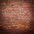 How to Clean Mildew off Bricks