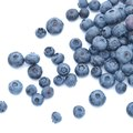 Difference Between Blueberries & Huckleberries
