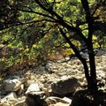 How to Make a Dry Riverbed Landscape