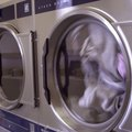 How to Reset a Bosch Dryer