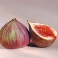 How to Germinate a Fig Seed