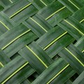 How to Braid Palm Leaves for a Flower Design
