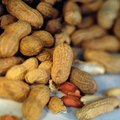 What is a Good Climate for Growing Peanuts?