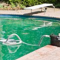 Chemicals in Algaecide for Pools