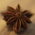 Substitutes for Star Anise Pods