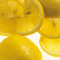 Are Lemon and Lime Poisonous to Dogs?