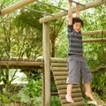 Do-It-Yourself: Jungle Gym