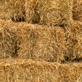 How to Garden With Hay Bales