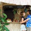 How to Make a Tiki Hut for a Luau